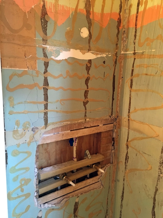 cracked plaster wall inside shower stall